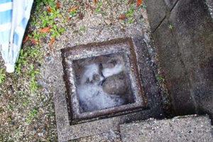 屋外雑排水本管排水修理